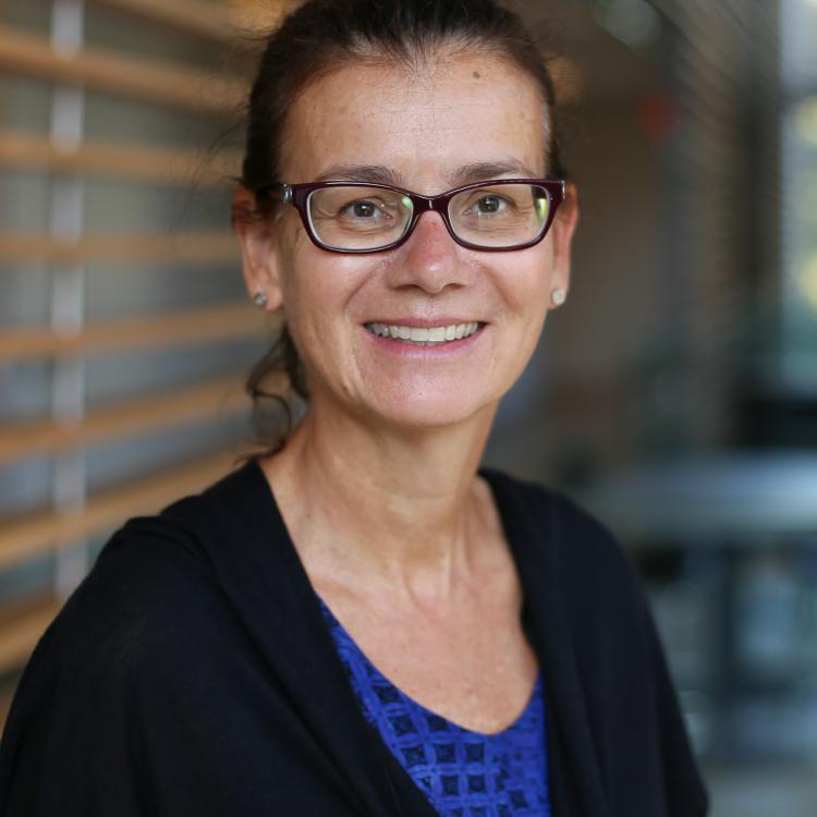 Harriet Feilotter